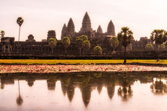 Reflecting Pond. Angkor Wats reflection on the Reflecting Pond near Angkor Wat in Siem Reap, Cambodia Royalty Free Stock Images