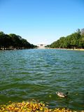 Reflecting Pool Royalty Free Stock Photos