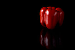 Reflecting red pepper on a black background Royalty Free Stock Photography