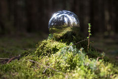 Reflecting sphere in the forest background Royalty Free Stock Photography