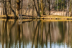 Reflecting on the water surface of the pond. Moravian landscape Pavlov Royalty Free Stock Photo