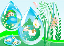 Reflection. Of the farm and the cows in the meadow in drops of dew Royalty Free Stock Images