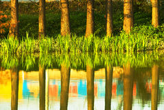 Reflection Royalty Free Stock Images