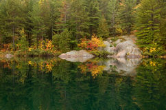 Reflection. Of colorful forest in lake surface in the overcast day Royalty Free Stock Photo
