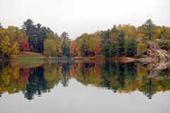 Reflection. Of colorful forest in lake surface in the overcast day Stock Photography
