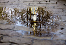 Reflection Stock Photos
