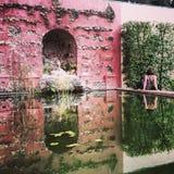 Reflection in alcazar of seville Stock Photo
