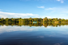 Reflection in the Amazon Royalty Free Stock Images