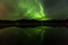 Reflection of Aurora Borealis over Olnes pond in Fairbanks, Alaska Royalty Free Stock Photography