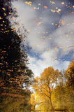 Reflection of autumn Royalty Free Stock Photo