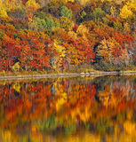 Reflection Autumn Colors Water Royalty Free Stock Photography