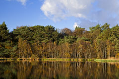 Reflection of autumn forest in lake Stock Image