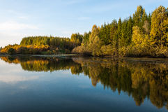Reflection of autumn. Autumn forest reflected on the lake surface Royalty Free Stock Image