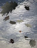 Reflection of the autumn leaves in water Stock Photos