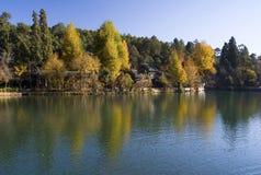 Reflection of autumn trees on water. Reflection of autumn trees on lake, Heiling Tan, Black Dragon Pool, Lijiang, Yunnan, China Stock Photos