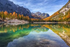 Reflection of autumn stock photo