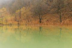 Reflection of autumn wood in lake.Village Vandam.Duyma.Gabala.Az Stock Photo
