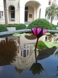 Reflection of Baan Puen  Palace or Phra Ram Ratchaniwet Palace  in pink waterlily  pond Royalty Free Stock Photography