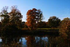 Reflection of beautiful trees in the water against the blue sky in autumn royalty free stock photos