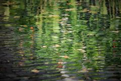 Reflection. Beautiful water refletion in the park Royalty Free Stock Image