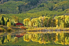 Reflection in Beaver Lake near Marble, CO Royalty Free Stock Photos