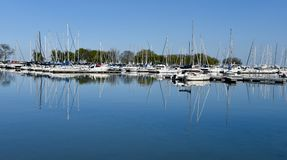Reflection In Belmont Harbor Royalty Free Stock Photo