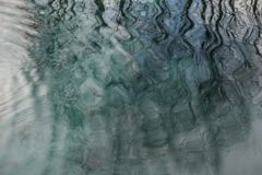 Reflection of branches in the water. Abstraction stock photos