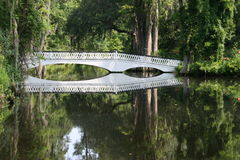 Reflection bridge. Wooden bridge at  Magnolia Garden in Charleston South Carolina Royalty Free Stock Image