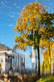 Reflection of buildings and tree in the autumn pond in Riga Stock Photography
