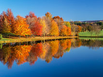 Reflection of  a Colorful Autumn Landscape Royalty Free Stock Image