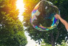 Reflection of the colorful sunset sky in a big soap bubble with Royalty Free Stock Photos