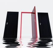 Reflection doors. Three doors, one is the good choice Stock Photos