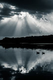 Reflection of dramatic sky and geese in Lake Pinchot, at Gifford Stock Photography