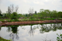 Reflection and Effects Environmental from Water contaminated wit Stock Photography