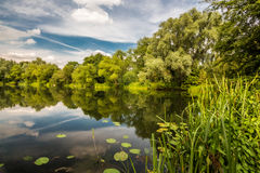 Reflection in Farlows lake. Photo was taken in area of Farlows lake,UK royalty free stock photography
