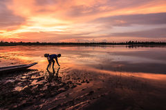 Reflection fisherman on the lake. Yasothon thailand royalty free stock image