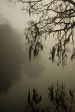 Reflection in fog Royalty Free Stock Images