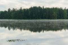 Reflection of forest in a lake Stock Photography