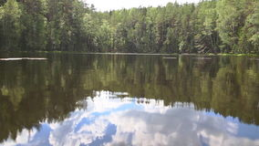 Reflection of forest in lake. Reflection of forest and sky in lake, Full HD stock video footage