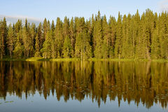 Reflection of forest in lake before sunset Stock Photo