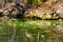 Reflection of forest in the lake surface Stock Photo
