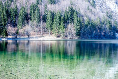 Reflection of forest in the lake surface Stock Photos