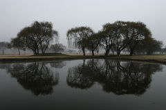 Reflection on the game. Reflection of trees in the water on a golf course Stock Photos