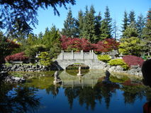 Reflection in the garden of a Buddhist temple Stock Image