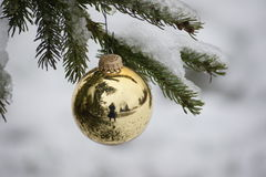 Reflection of the gold Christmas bulb. Royalty Free Stock Images