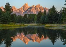 Reflection of the Grand Tetons during sunrise at Schwabacher Landing royalty free stock images