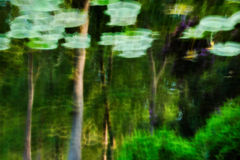 Reflection. Impressionist photo of nature reflection on water,multiple exposures and intentional camera movement Stock Photography