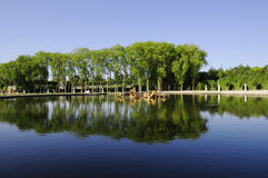 Reflection of the lake Stock Photography