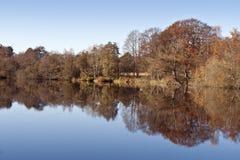 Reflection in a Lake Stock Photos