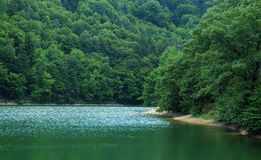 Reflection on lake. With green trees on background Royalty Free Stock Images